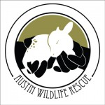 Austin Wildlife Rescue logo redesign